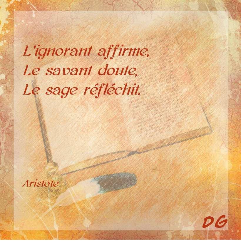 Aristote Ignorant